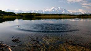 Reflection Lake 195