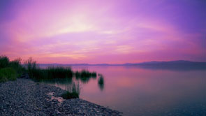 Nature Landscape Purple Skies at the Lake